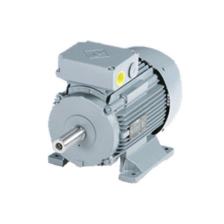 Forced Ventilation Motors - Electric Motors