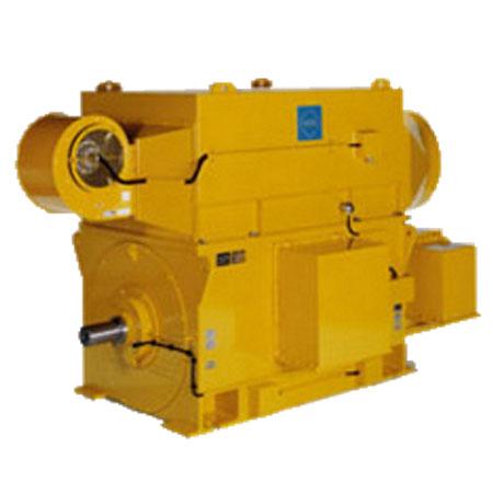 High Voltage Motors - Electric Motors